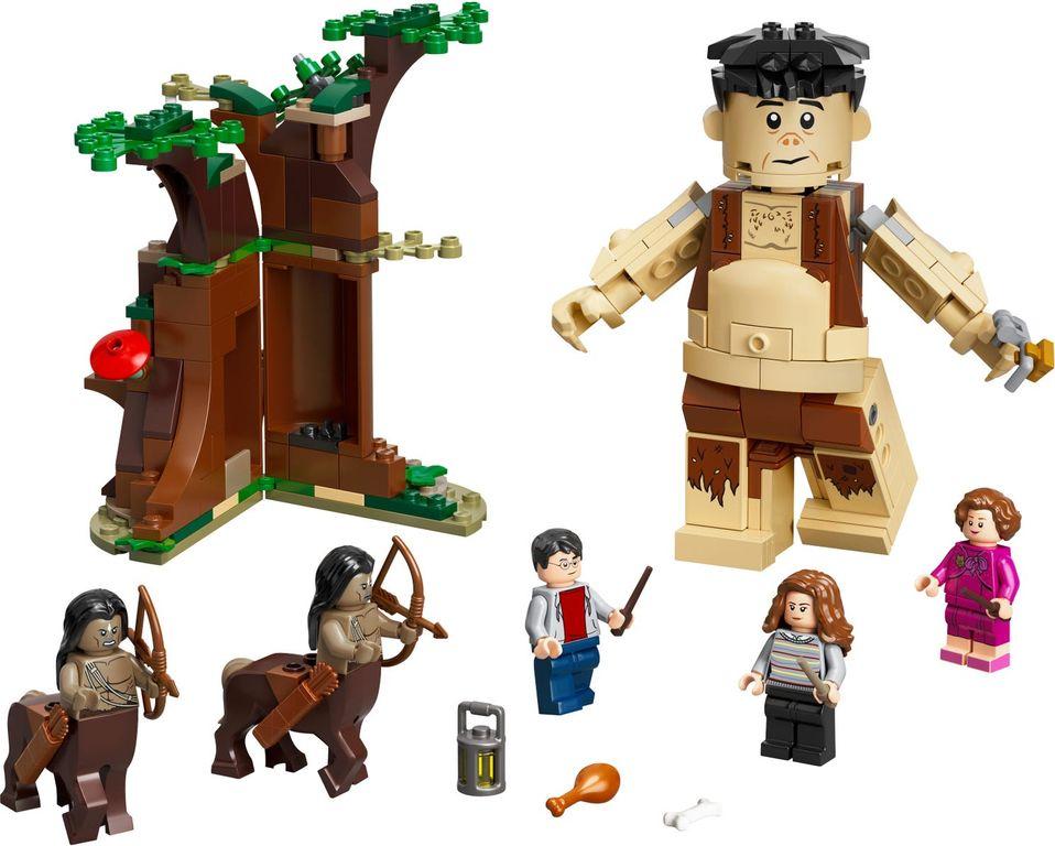 Forbidden Forest: Umbridge's Encounter components