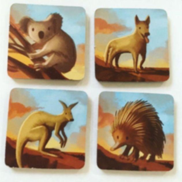 Dingo's Dreams cards