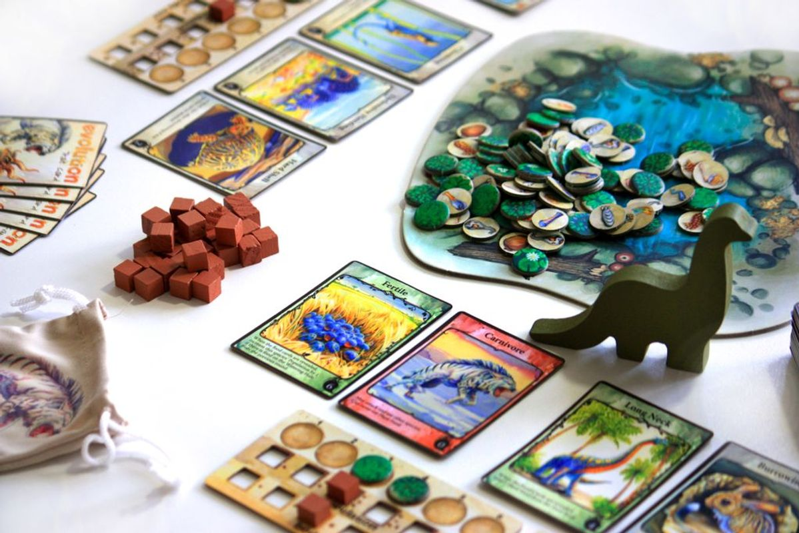 Evolution gameplay