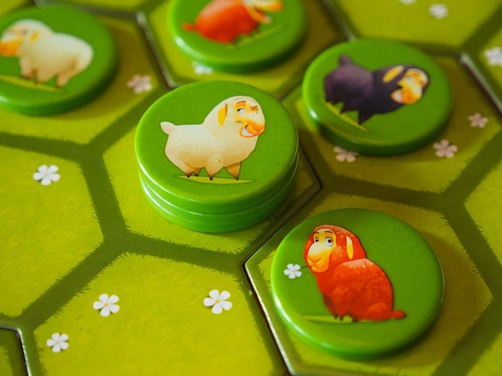 Battle Sheep gameplay