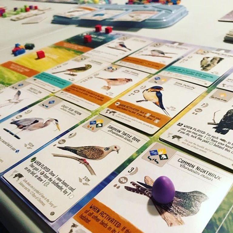 Wingspan: European Expansion gameplay