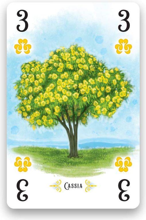 Arboretum Deluxe card