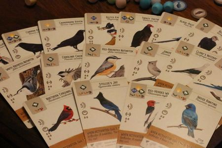 Wingspan bird cards