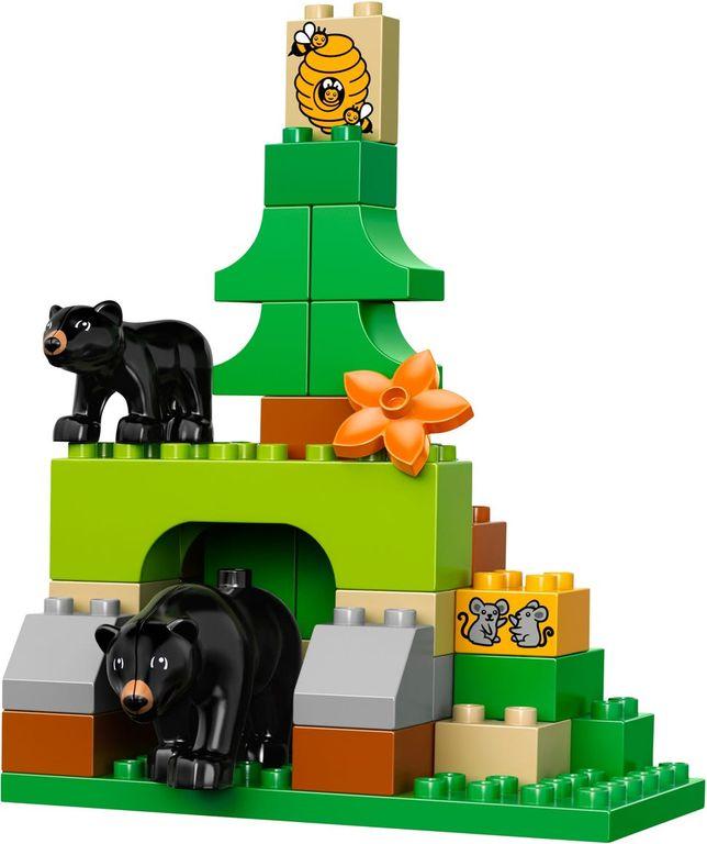 Forest: Park animals