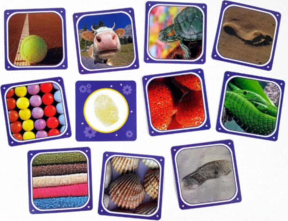 Cortex Challenge Kids components