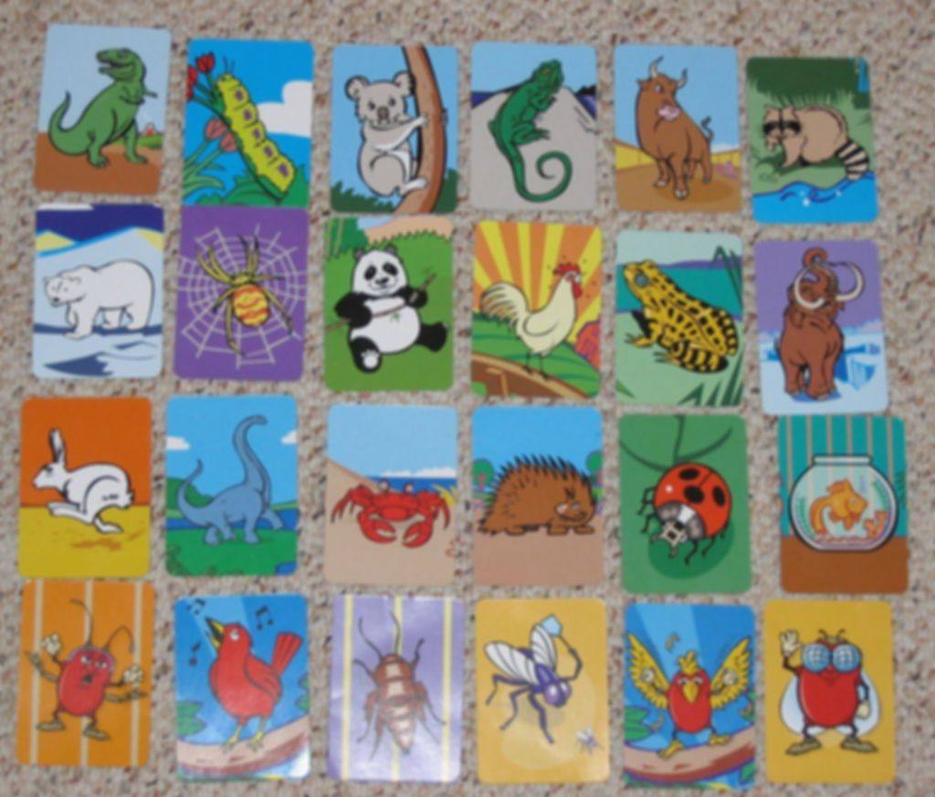 Birds, Bugs and Beans cards