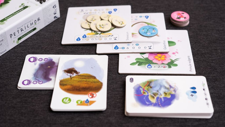 Petrichor: Flowers cards