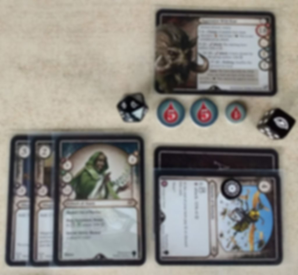 Aventuria: Forest of No Return components