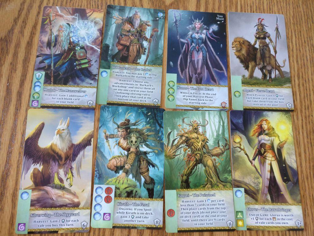 Mystic Vale: Mana Storm cards