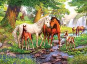 Wild Horses on the River