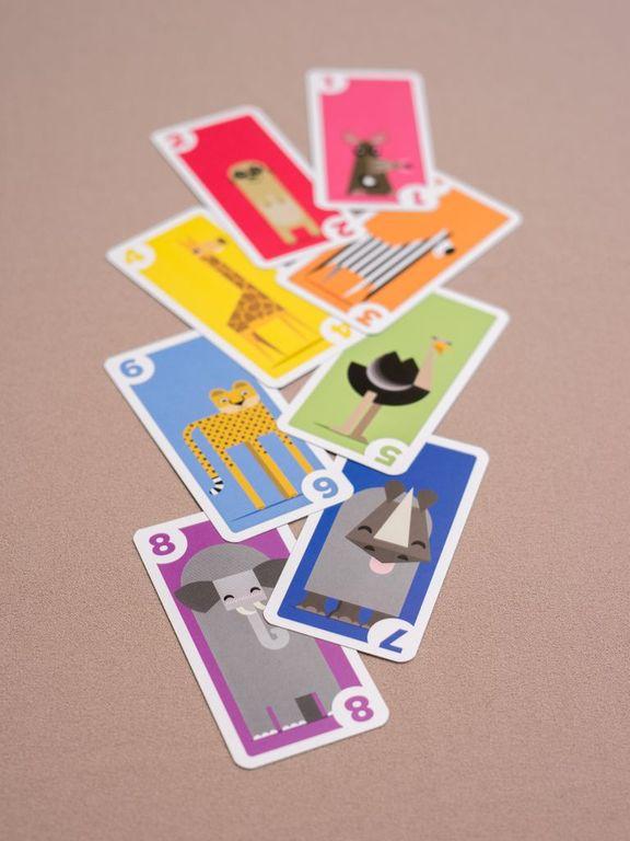 Kariba cards