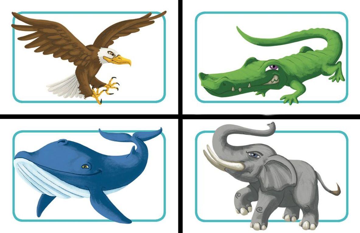 Concept Kids: Animals cards