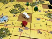 Carcassonne: Safari gameplay