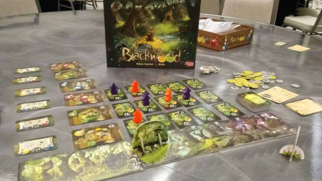 Blackwood gameplay