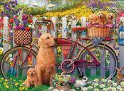 Cute Dogs in The Garden