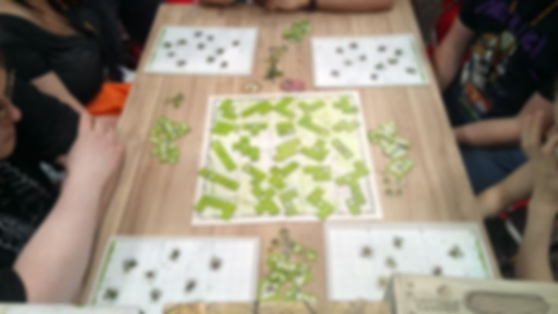 Spring Meadow gameplay