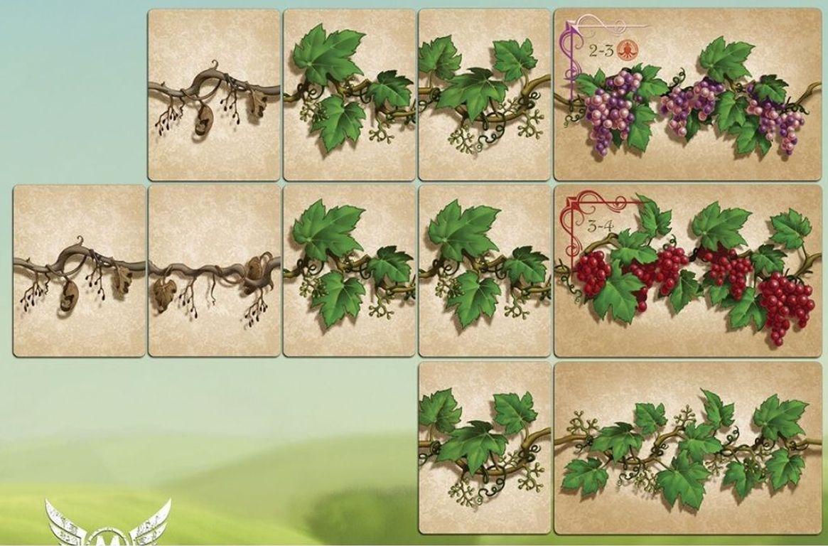 King's Vineyard cards