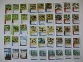 Imperial Settlers: 3 Is a Magic Number cards