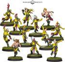 Blood Bowl (2016 edition): Athelorn Avengers – Wood Elf Blood Bowl Team miniatures