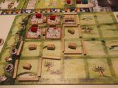 Lowlands gameplay