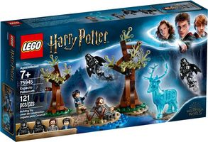 LEGO® Harry Potter Expecto Patronum
