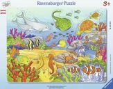 Happy Sea Dwellers