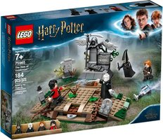 LEGO® Harry Potter™ The Rise of Voldemort™