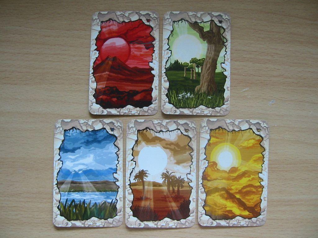 T-Rex cards