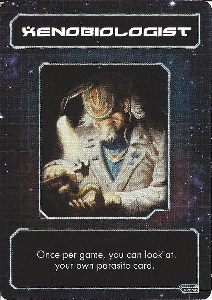 Burke's Gambit cards