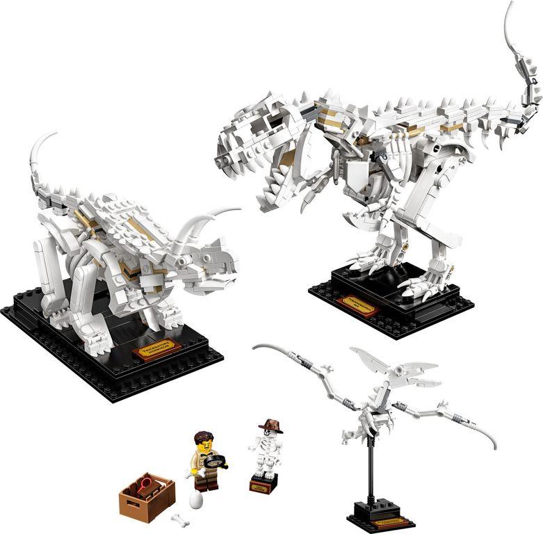 LEGO® Ideas Dinosaur Fossils components