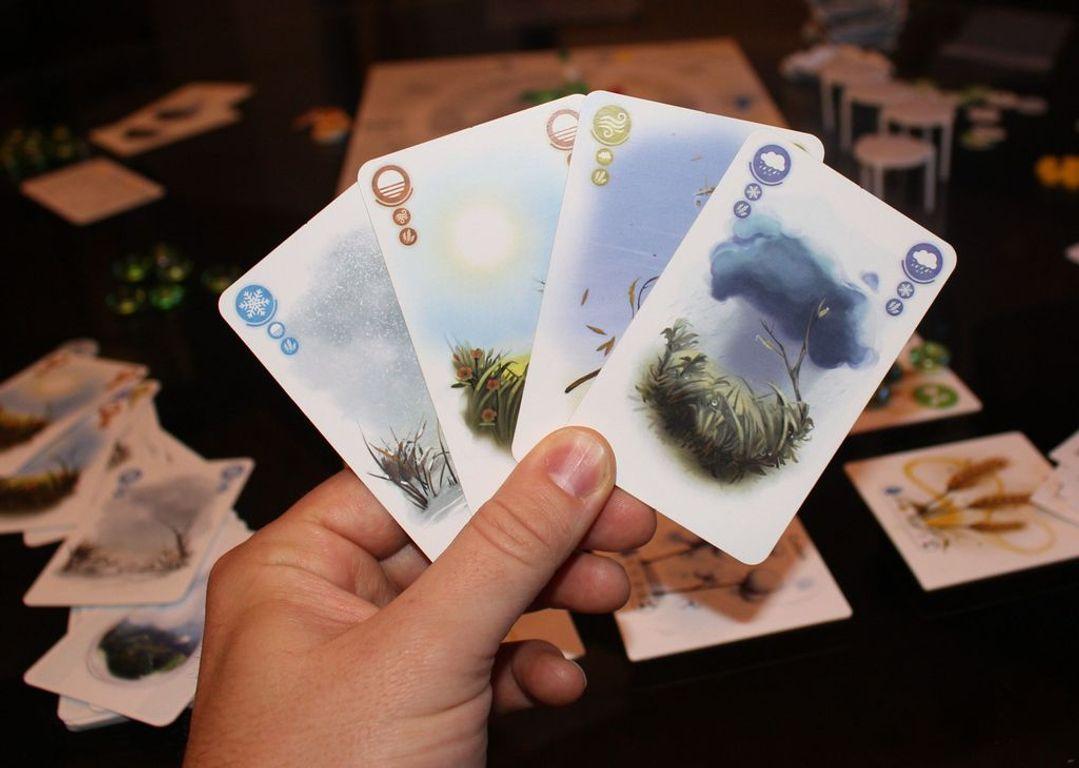 Petrichor cards