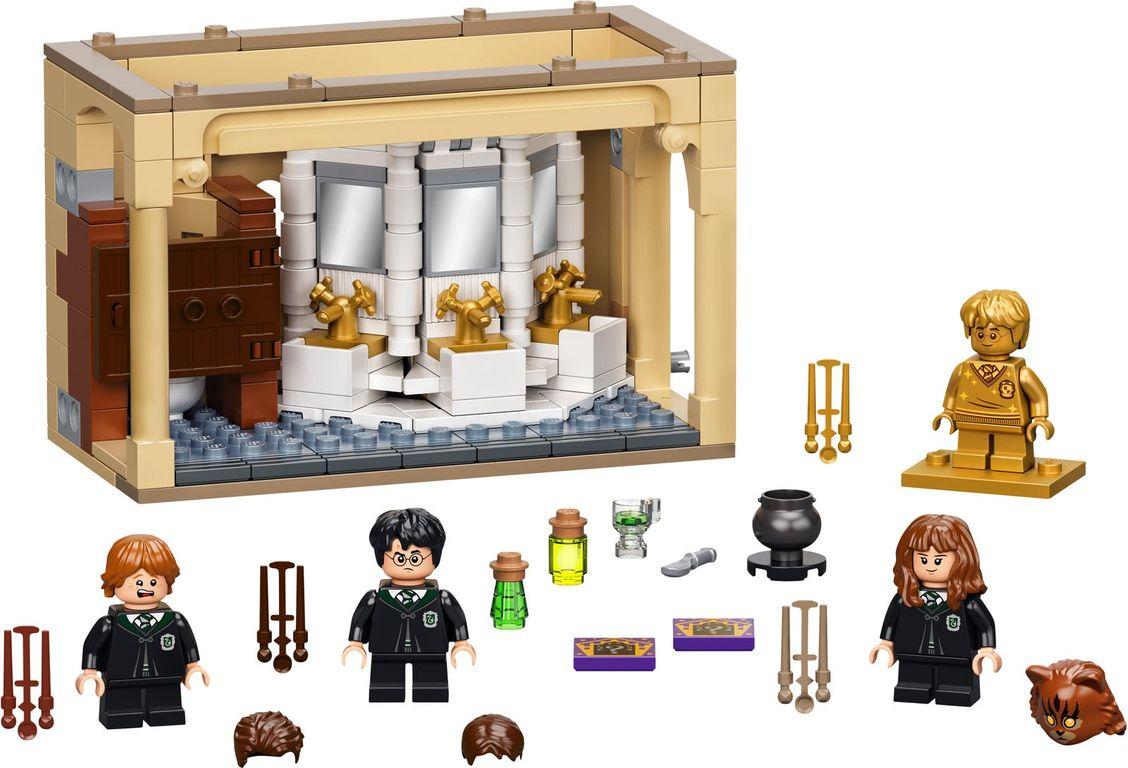 LEGO® Harry Potter™ Hogwarts™: Polyjuice Potion Mistake components