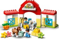 LEGO® DUPLO® Horse Stable and Pony Care gameplay
