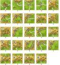 Carcassonne: Traders & Builders tiles