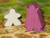 The Count of Carcassonne components