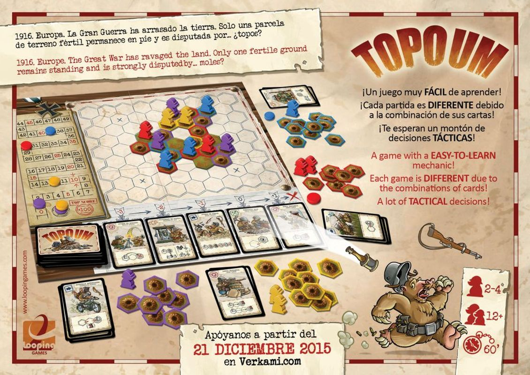 Topoum back of the box