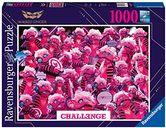 Challenge Monsterchen