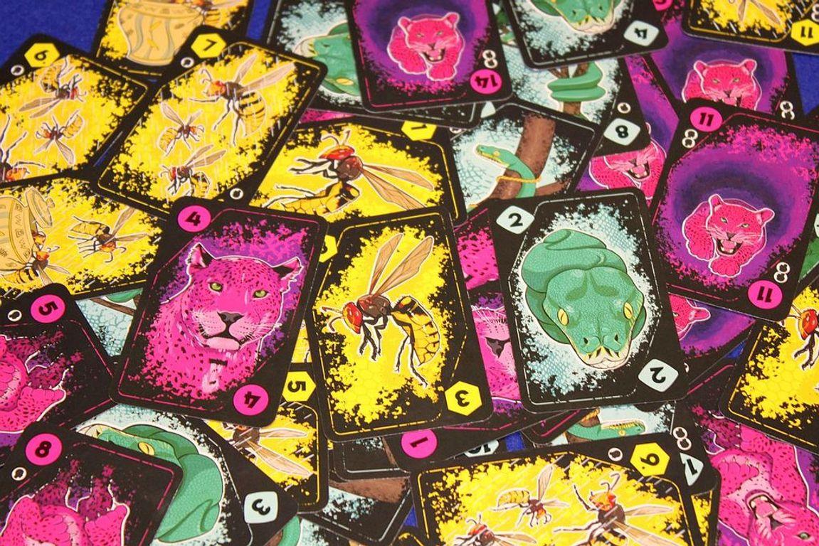 Anansi kaarten