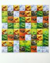 Dragomino tiles