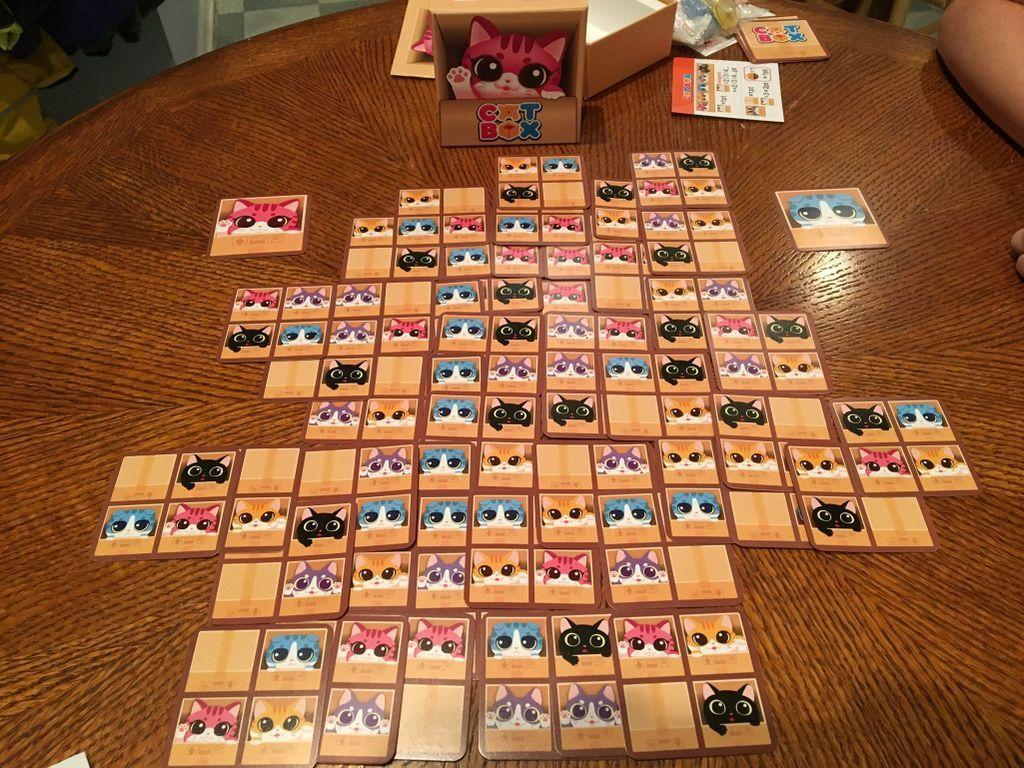 Cat Box gameplay
