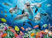 Dolphins In Coral Reef