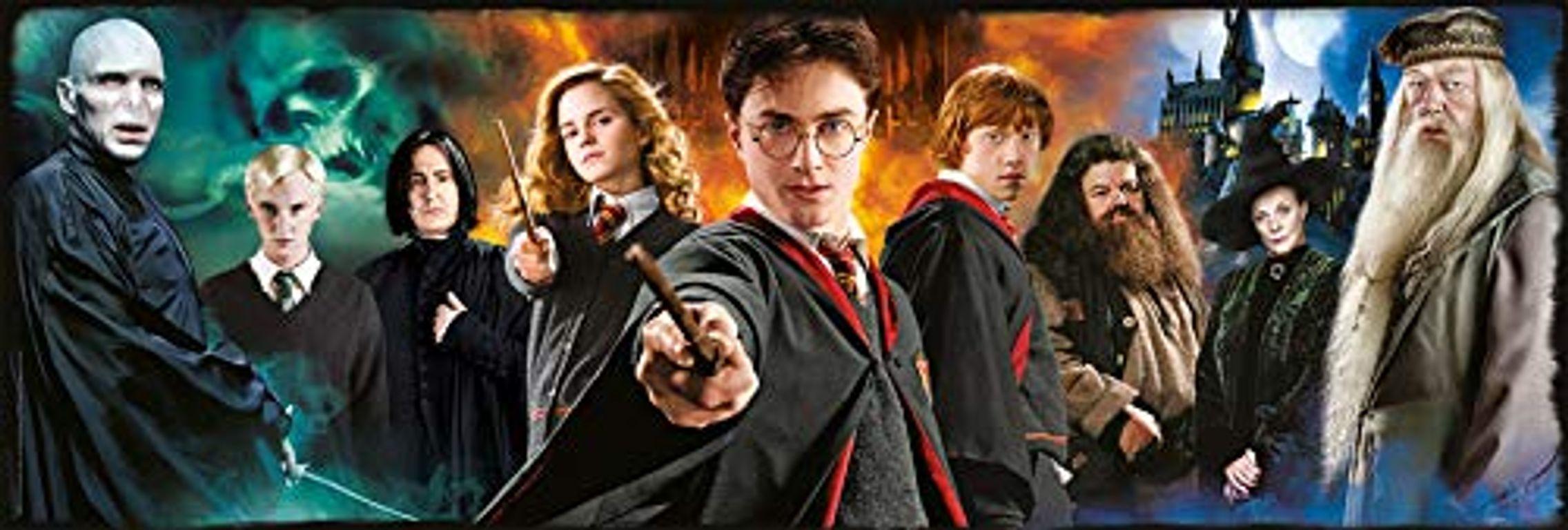 Harry Potter Panorama