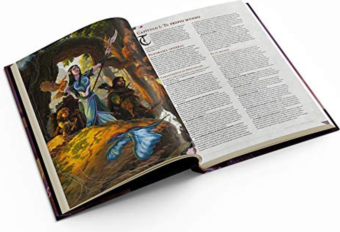 Dungeon Master's Guide (D&D 5e) manual