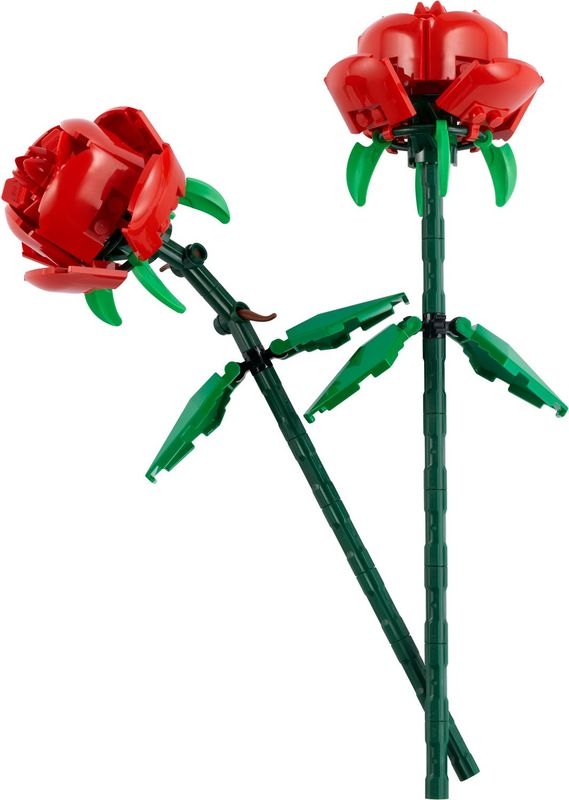 Roses components