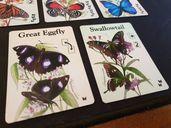 Fluttering Souls cards