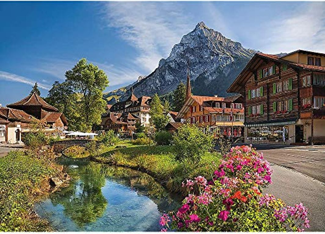 Alps in the Summer