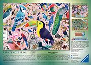 Matt Sewell's Amazing Birds back of the box