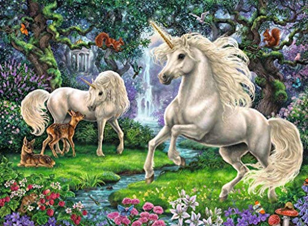 Mysterious Unicorns