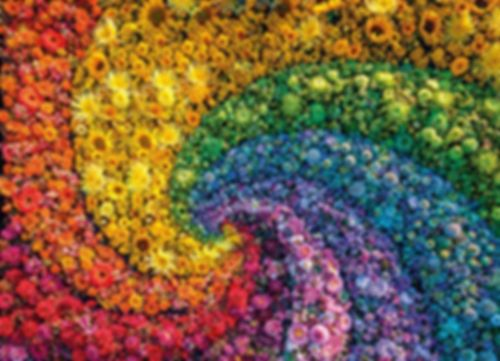 Colorboom Collection-Whirl