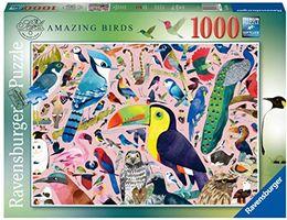 Matt Sewell's Amazing Birds